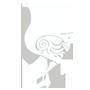 icon-bird-9090